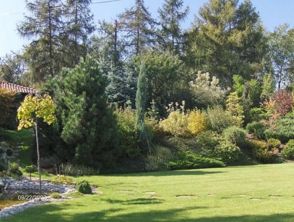 powierzchnia-ogrodowa-15