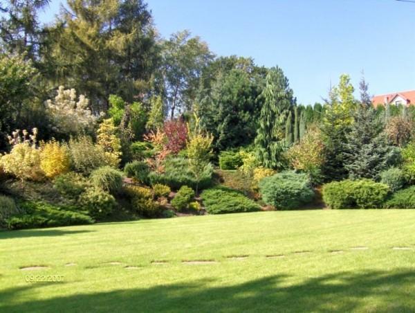 powierzchnia-ogrodowa-16