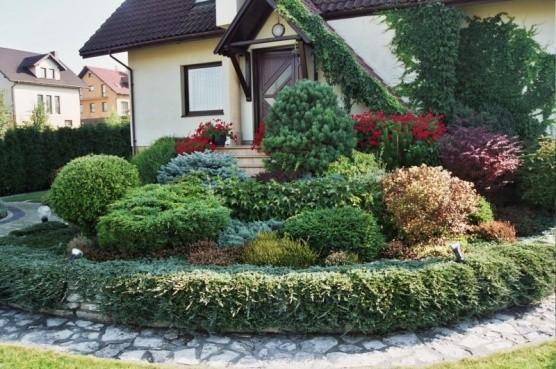 ogród-4